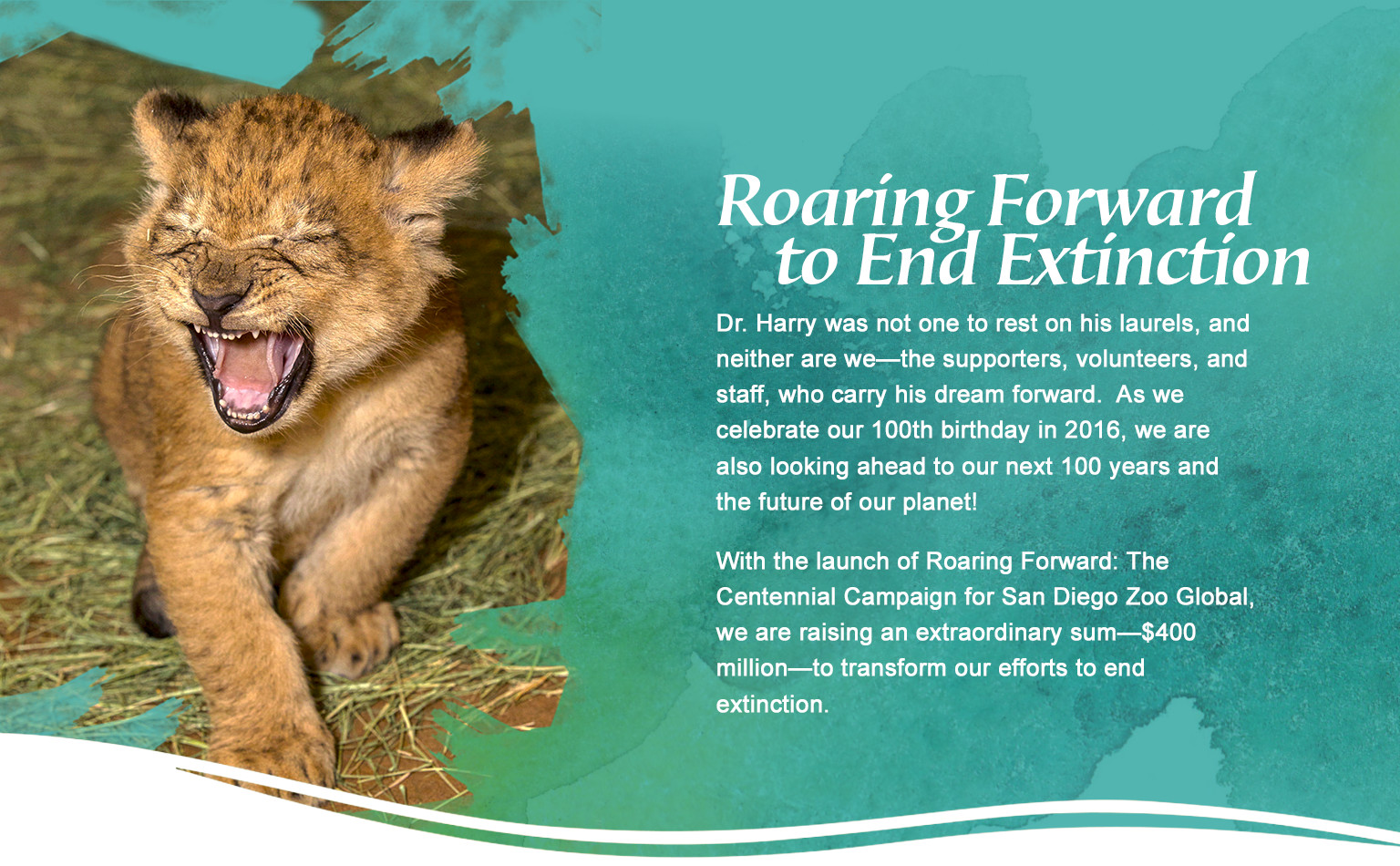 roaring forward with san diego zoo global